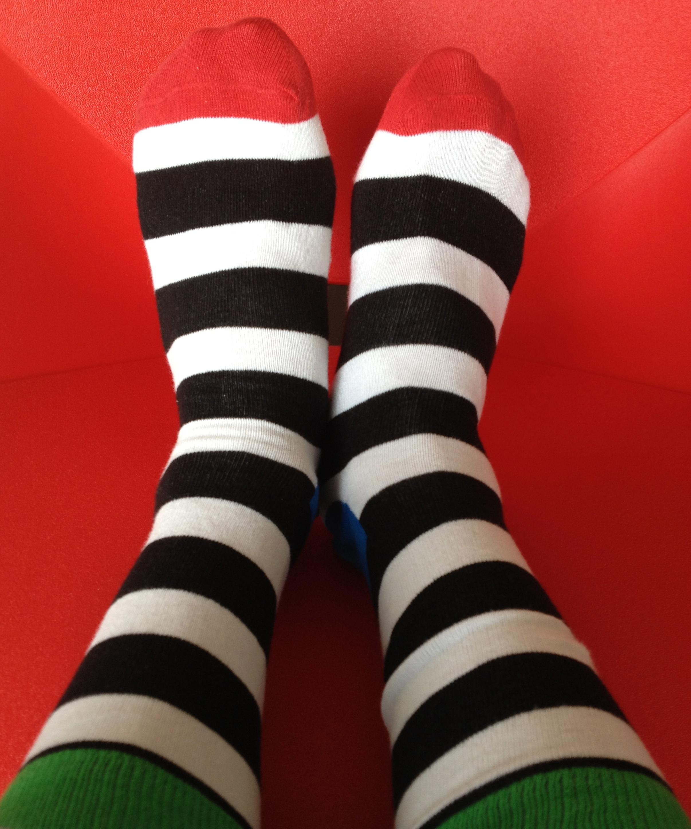 本日の靴下。サミーからのお誕生日プレゼント